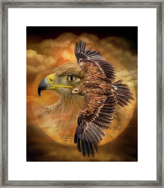 Spirit Of The Wind Framed Print