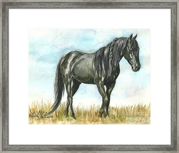 Spirit Wild Horse In Sanctuary Framed Print
