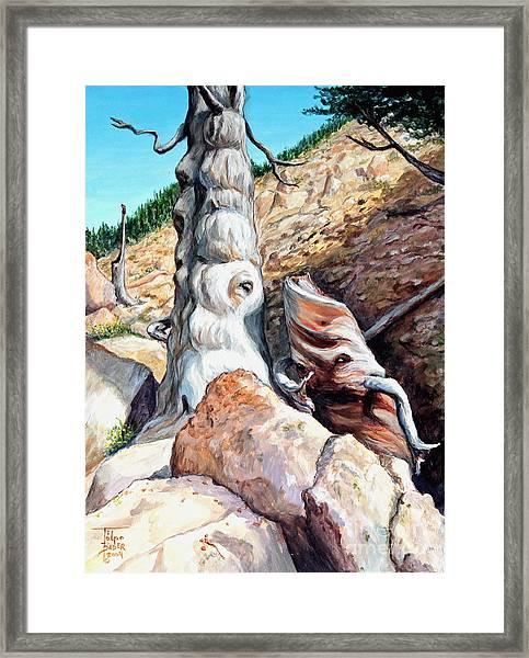 Spirits Of Limber Grove Framed Print