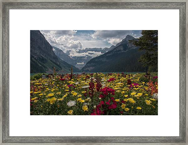 Splash Of Color Framed Print
