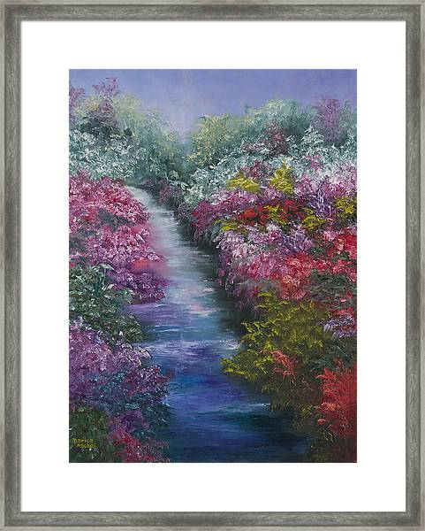 Splash Of Spring Framed Print