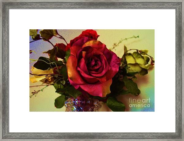 Splendid Painted Rose Framed Print