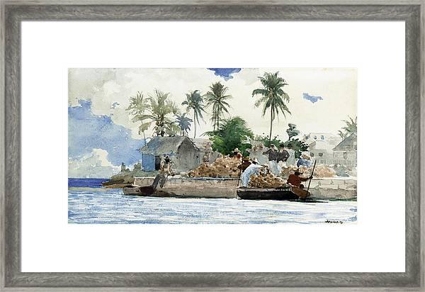 Sponge Fishermen Framed Print