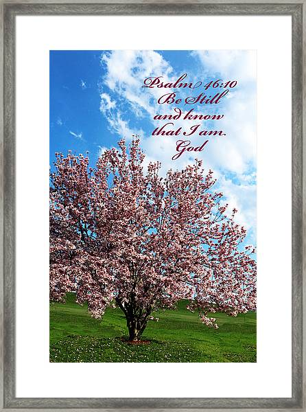 Spring Blossoms With Scripture Framed Print