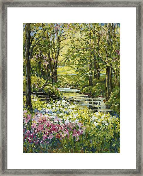 Spring Creek Rockford Il Framed Print