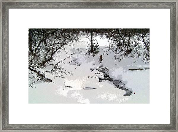 Spring Fed Brook Framed Print