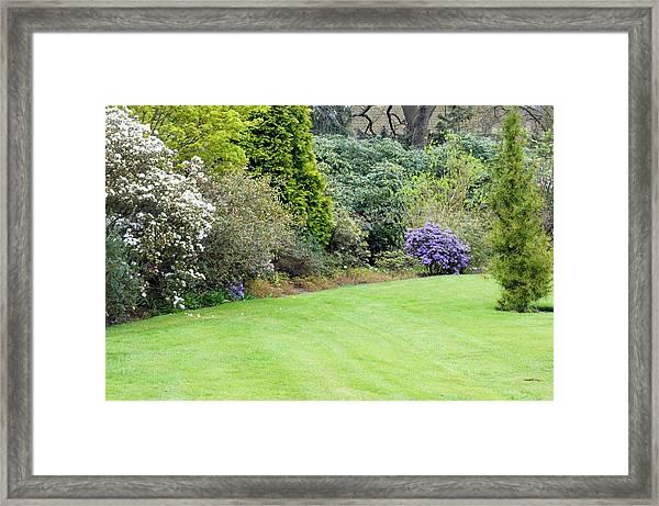 Spring In A Botanic Garden Framed Print