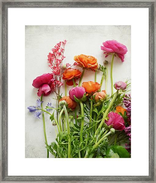 Spring Joy Framed Print