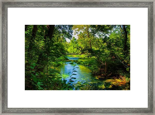 Spring Of Wonderment Framed Print