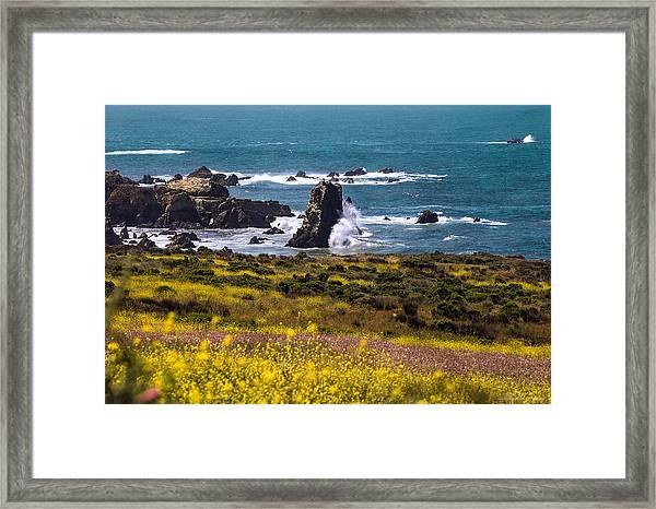 Spring On The California Coast By Denise Dube Framed Print
