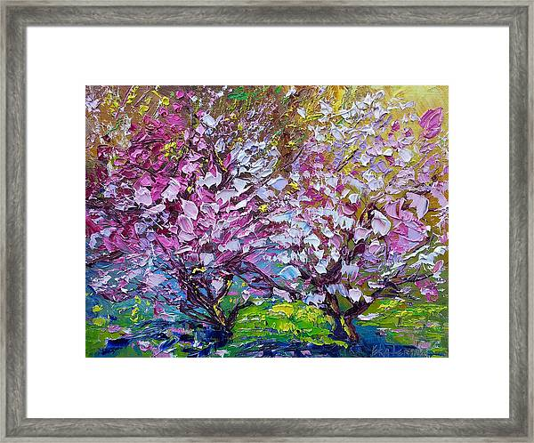 Spring Painting Of Pink Flowers On Magnolia Tree Fine Art By Ekaterina Chernova Framed Print