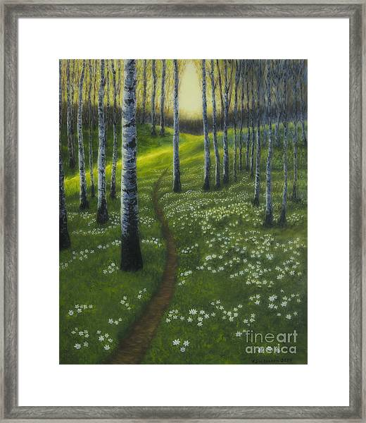 Spring Path Framed Print