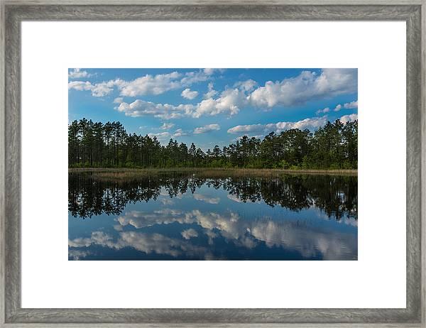 Spring Pond Framed Print by Jim Neal