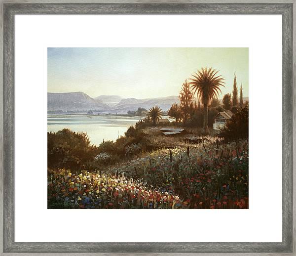 Spring Sunset  Northern Galilee Framed Print