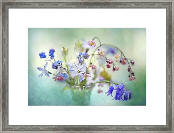 Spring Treasures Framed Print
