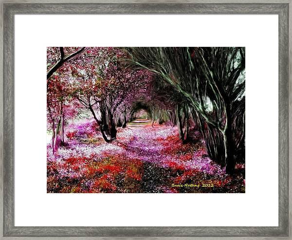 Spring Walk In The Park Framed Print