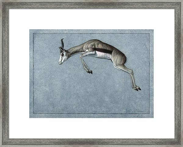 Framed Print featuring the painting Springbok by James W Johnson