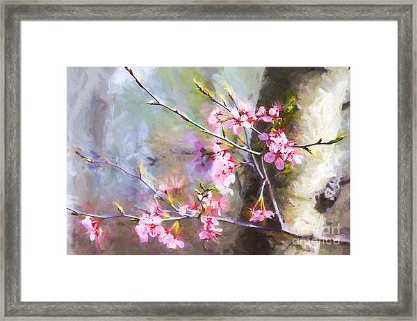 Spring's Awaited Color Framed Print