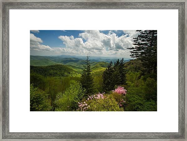 Spring's Green Blanket Framed Print