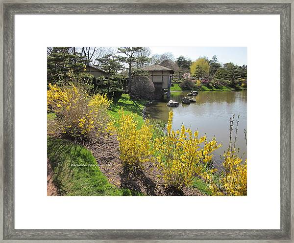 Springtime At The Japanese Gardens Framed Print