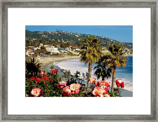 Springtime In Laguna Framed Print