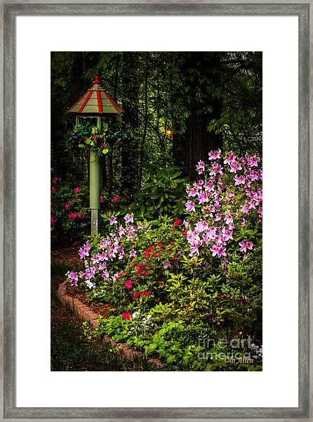 Springtime In The Garden  Framed Print