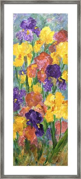 Springtime Iris Framed Print
