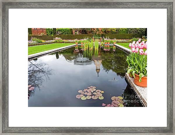 Springtime Reflections Framed Print