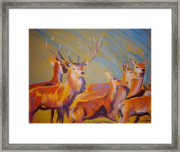 Stag And Deer Painting Framed Print