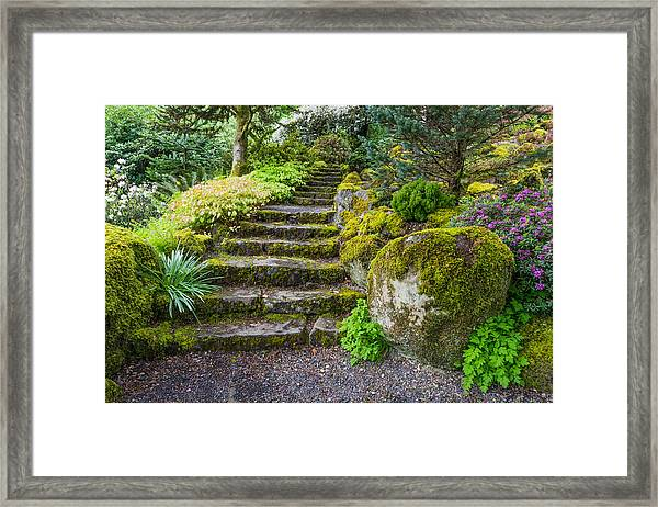Framed Print featuring the photograph Stairway To The Secret Garden by Priya Ghose
