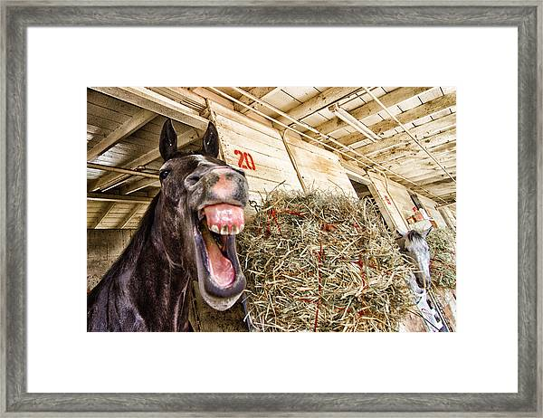 Framed Print featuring the photograph Stall 20 by Robert Rus