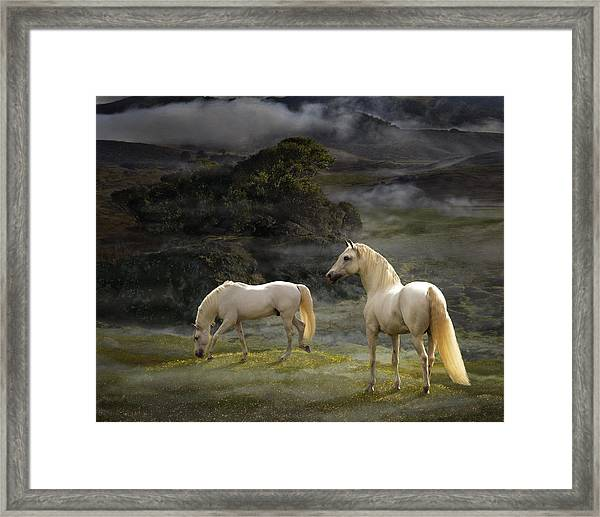 Stallions Of The Gods Framed Print