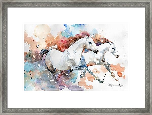 Stallions Framed Print
