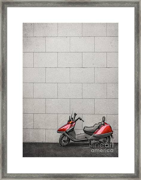 Stand Your Ground  Framed Print