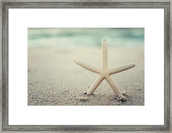 Starfish On Beach Vintage Seaside New Jersey  Framed Print