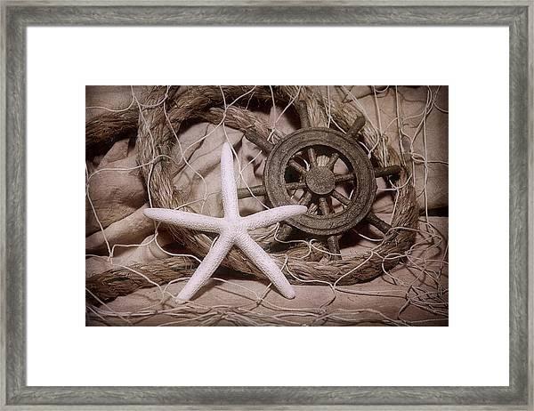 Starfish Still Life Framed Print