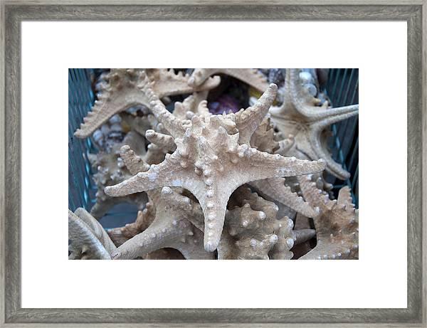Stars Of The Timeless Sea Framed Print