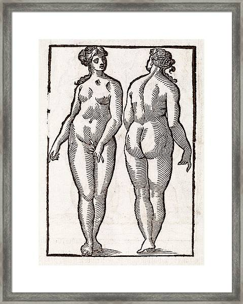 Statue By Praxiteles Framed Print by Middle Temple Library