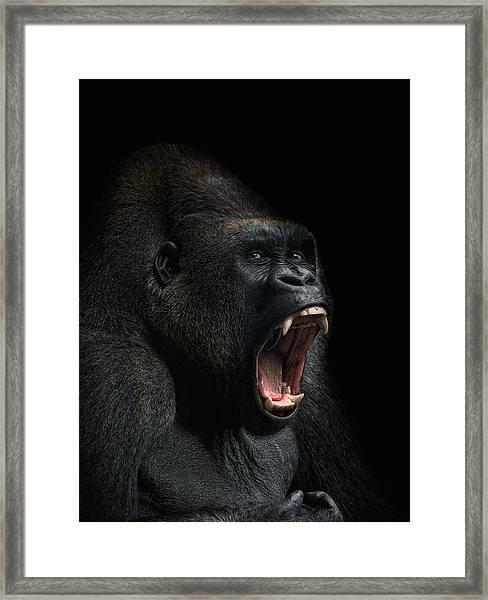 Stay Away Framed Print