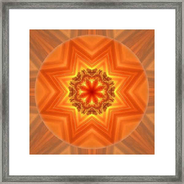 Framed Print featuring the photograph Stay Connected Mandala by Beth Sawickie