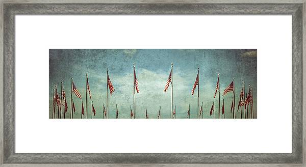 Steadfast Framed Print