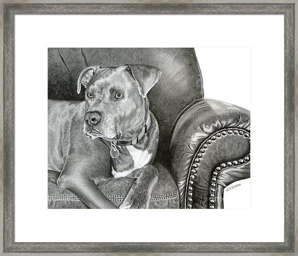 Leather And Steel Framed Print