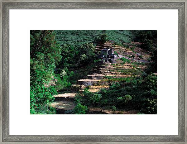 Step By Step Up Framed Print
