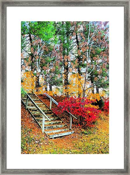Step Into Autumn Framed Print