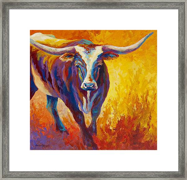 Stepping Out - Longhorn Framed Print