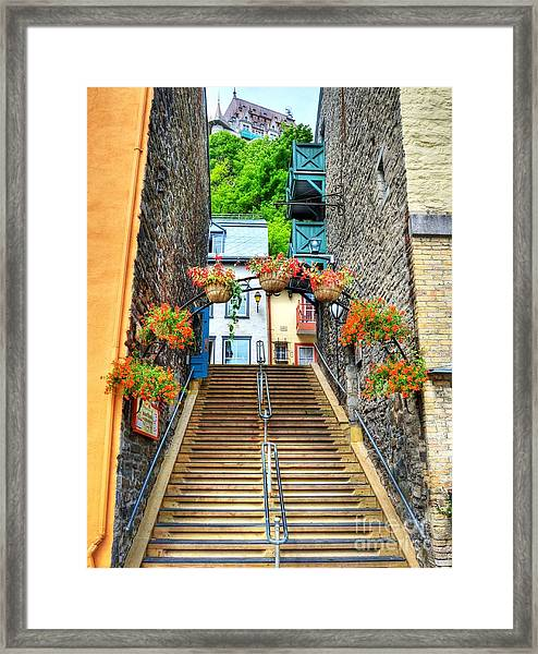 Framed Print featuring the photograph Steps Of Old Quebec by Mel Steinhauer