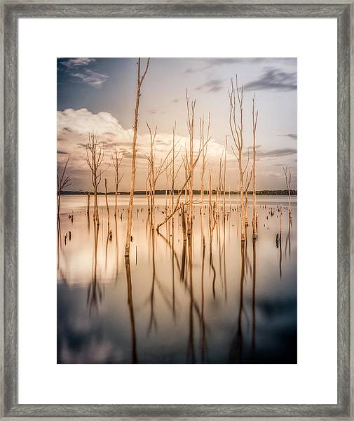Framed Print featuring the photograph Sticks by Steve Stanger