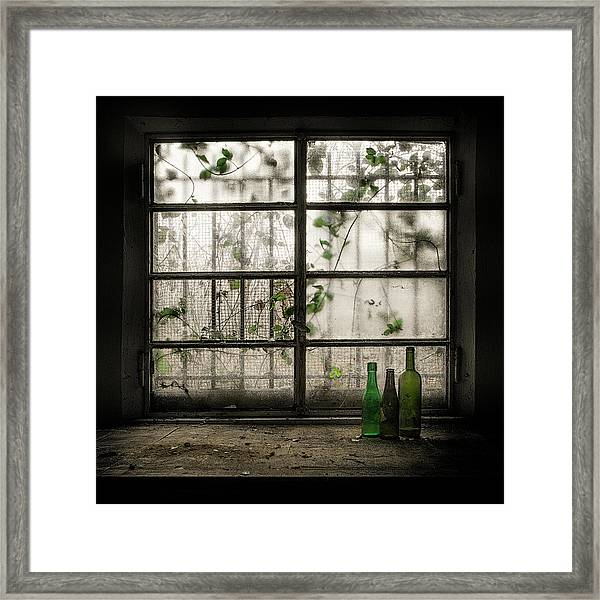 Still-life With Glass Bottle Framed Print by Vito Guarino