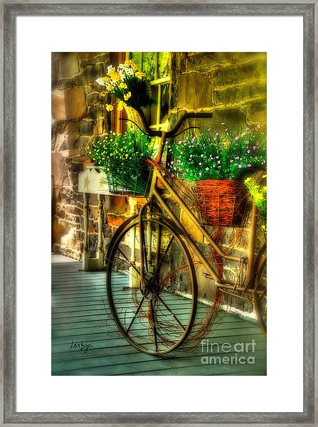 Framed Print featuring the photograph Still Useful by Lois Bryan
