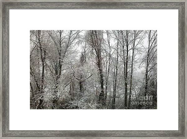 Stillness In Black And White Framed Print